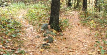 """""""Two Paths Diverged in a wood"""" - by NathanWert - CC"""